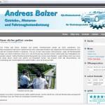andreas-balzer.com Getriebe
