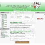 Unsere Referenz: hsg-09.de